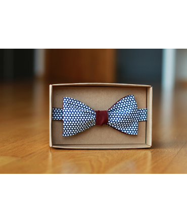 Oboustranný motýlek modrý puntík/bordó